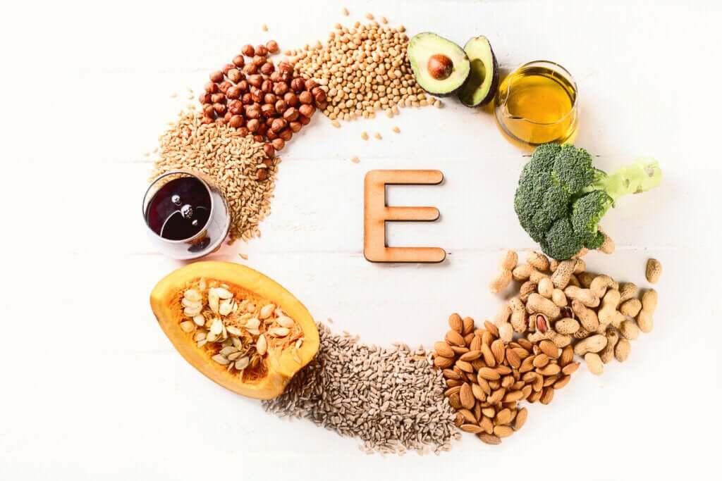 A importância da vitamina E para cães e gatos