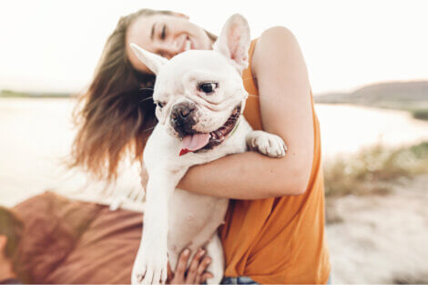Um cachorro na praia com sua tutora.