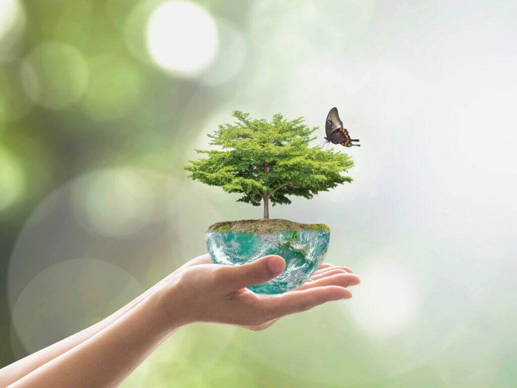 O que é um nicho ecológico?