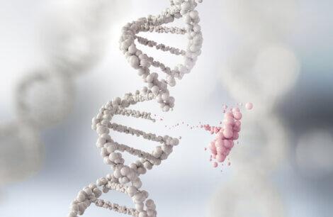 Uma dupla hélice de DNA branco.