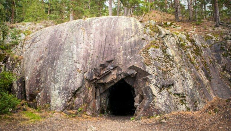 6 animais encontrados na caverna de Movile
