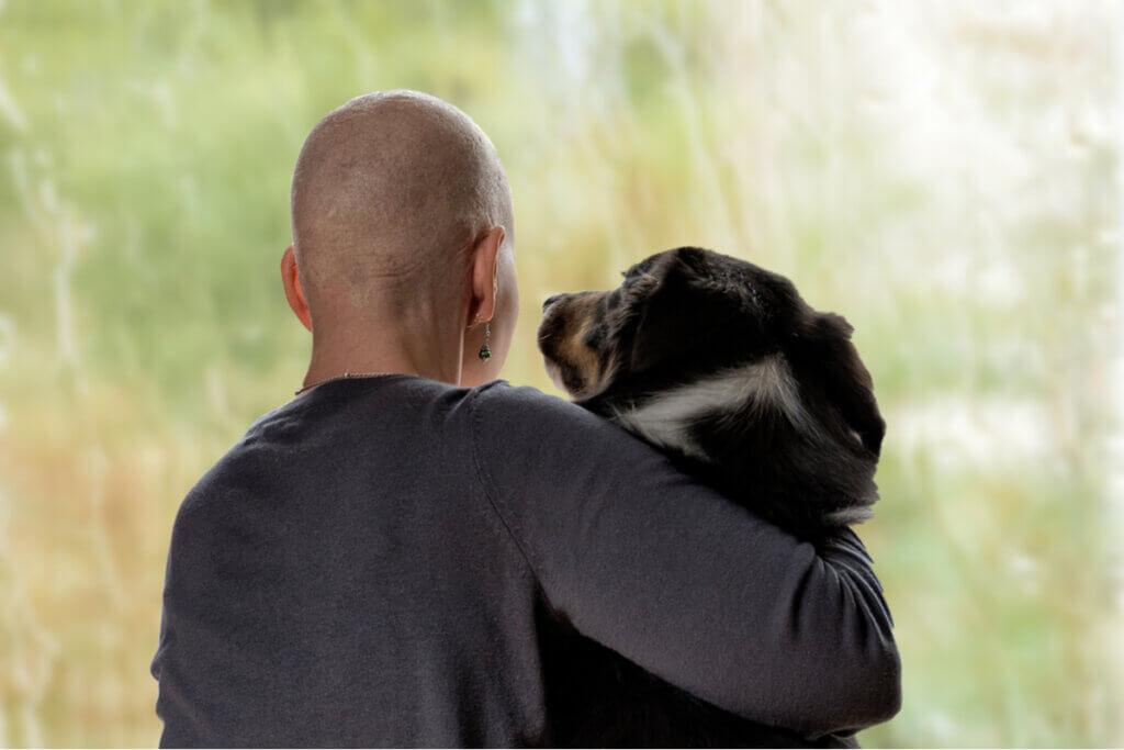 5 valores que você pode aprender com os animais