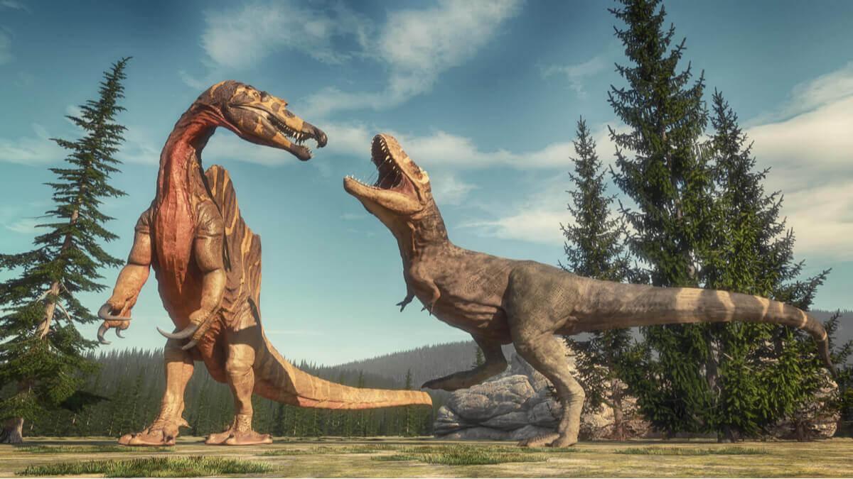 Uma luta entre dinossauros.