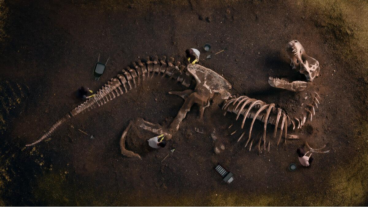 Exemplo dos dinossauros mais antigos.