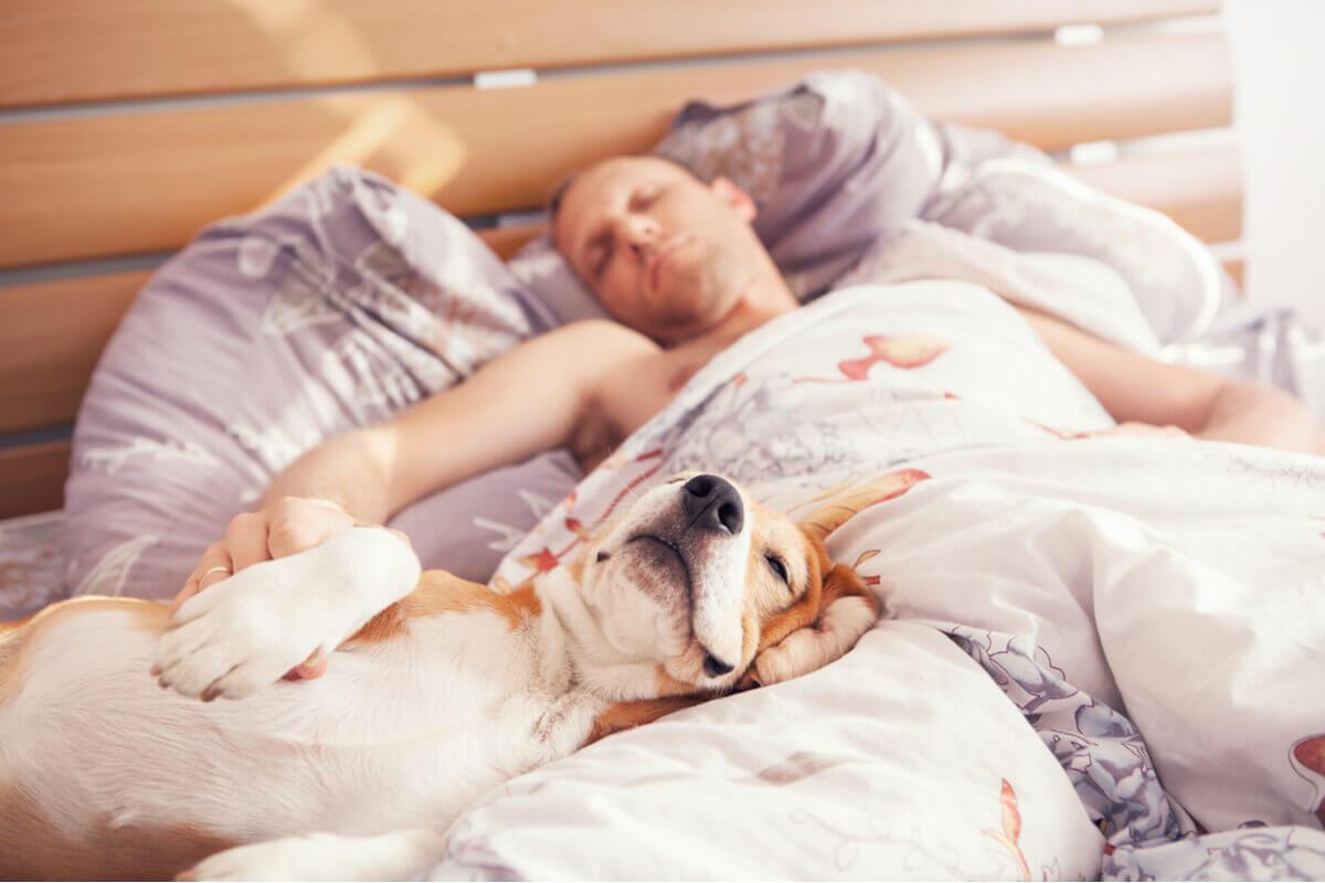 Uma pessoa dormindo com seu cachorro.
