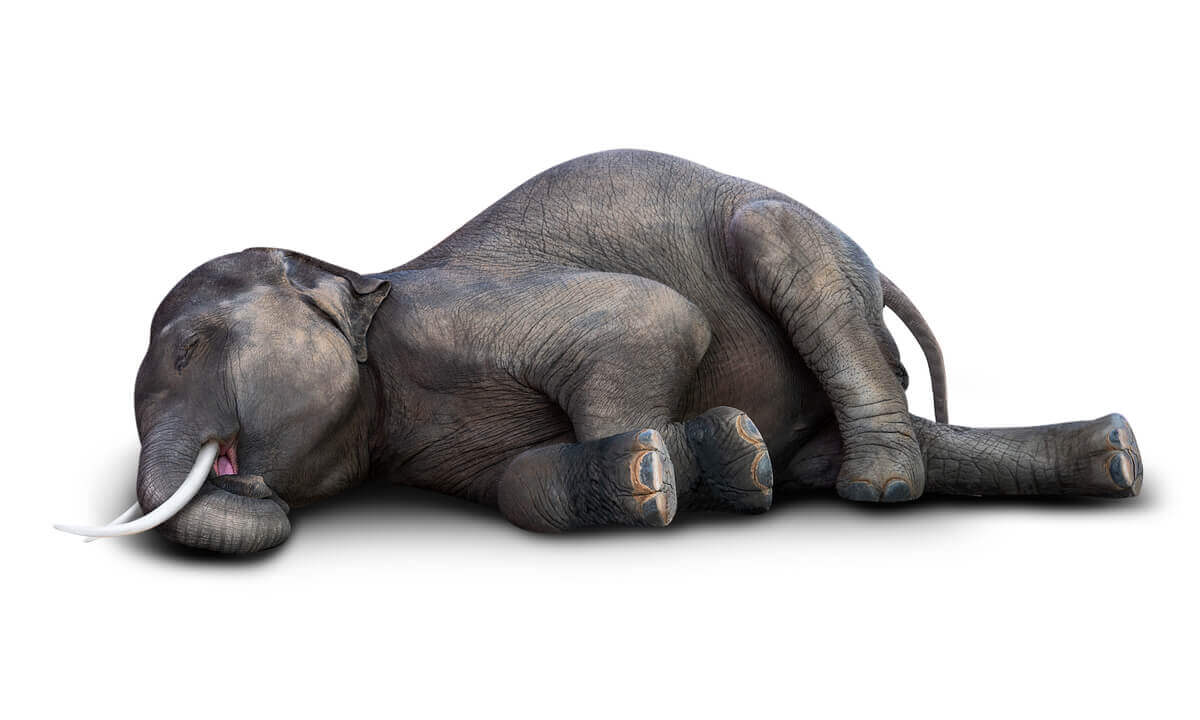 Um desenho de elefantes mortos.
